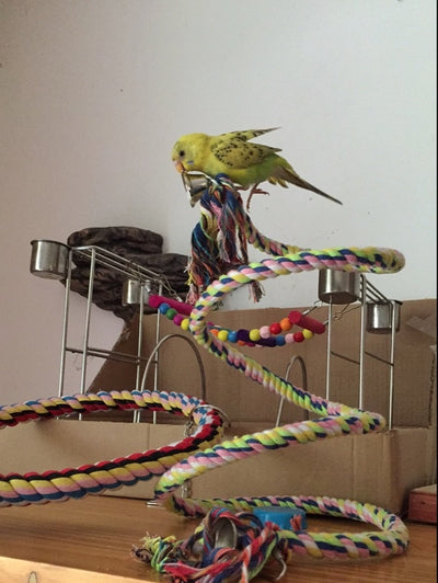 160cm Long Pet Bird Standing Decoration Climbing Parrot