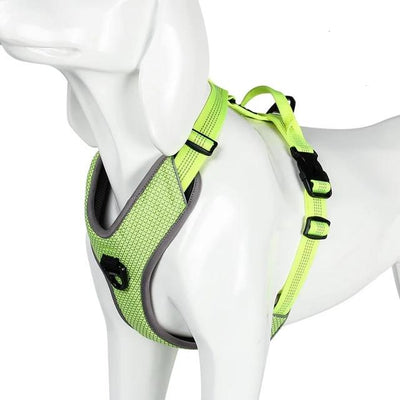 Truelove Pet-Harness Seat-Belt Handle Reflective-Dog Walk Soft Small Large Padded