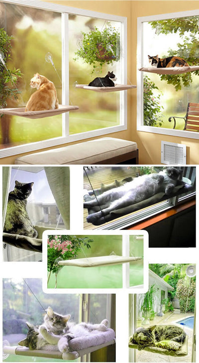 YOAINGO Hanging Bearing 20kg Cat Sunny Seat Window Mount