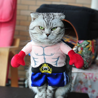 Funny Boxer Cosplay Suit Cat Clothing Halloween Uniform