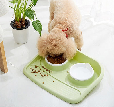Bowls Rice-Basin Water-Food-Storage-Feeder Puppy-Dog Stainless-Steel Combo Non-Toxic