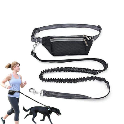 Dogs-Leash Dog Belt Waist-Pocket Running-Product Hands-Free Elasticity Multi-Function