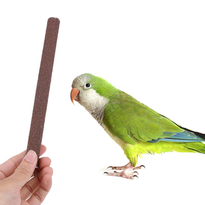 Toys Perch-Stand-Holder Platform-Accessories Bird-Supplies Bird Parrot Chew-Toy Pet-Cage