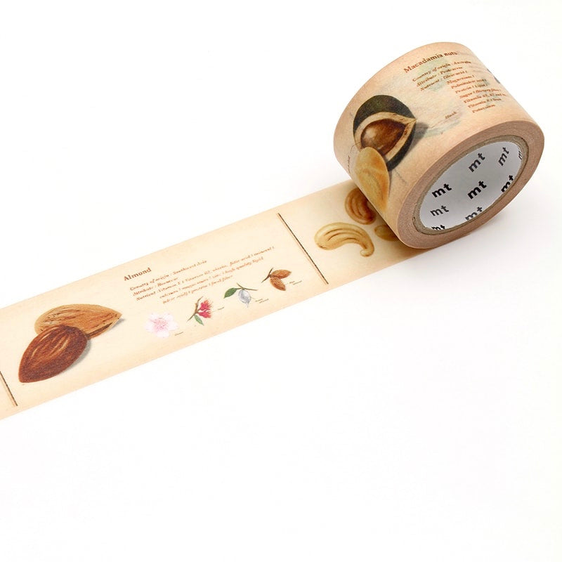 MT EX Washi Tape Encyclopedia Nuts