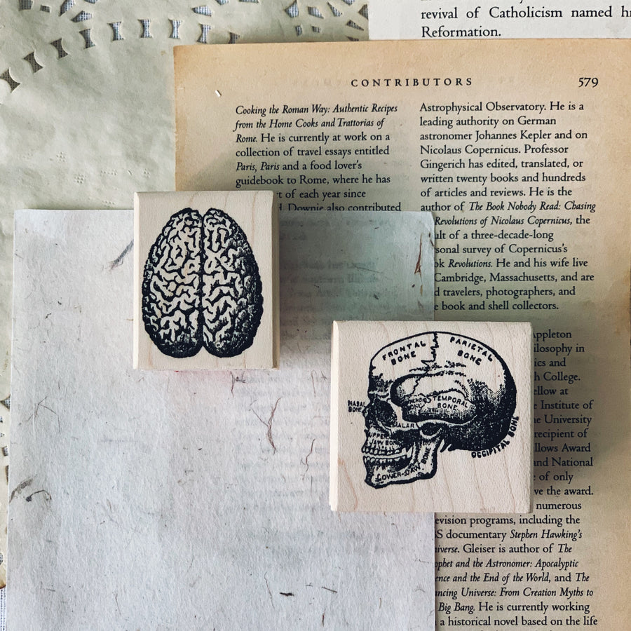 100 Proof Press Rubber Stamp - Brain, Top Shot