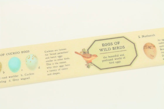MT Bird Egg Washi Masking Tape