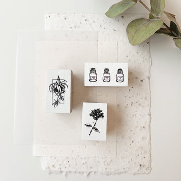 B.Book Rubber Stamps - spider plant & Hydrangea