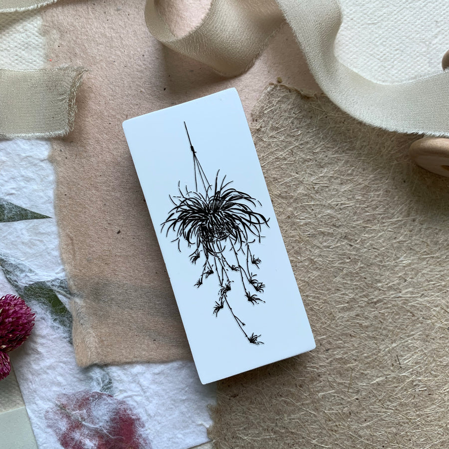 B.Book Spider Plant Rubber Stamp