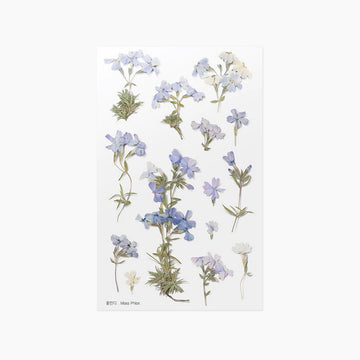 Appree Press moss phlox sticker