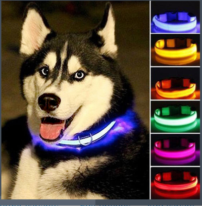 LED Dog Collar for large dogs