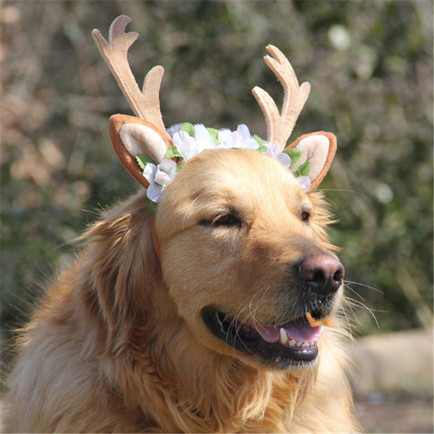 Cute Antlers Head Band Caps