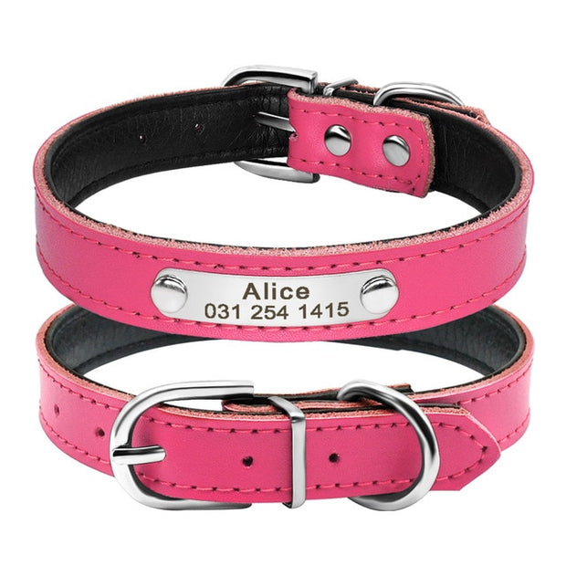 Leather Dog Collar Padded Inner w/ Engraved Nameplate ID Tag
