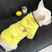 Warm Winter Hoodies for you and your Dog