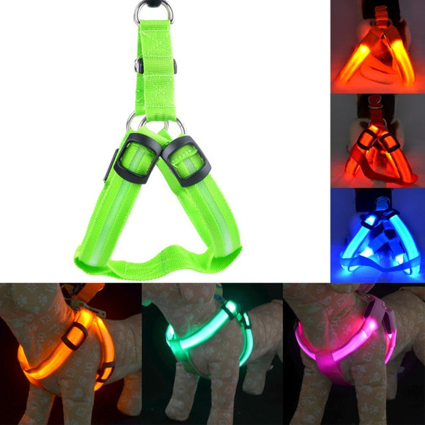 Rechargeable LED Nylon Pet Dog Cat Harness Led Flashing Light Harness