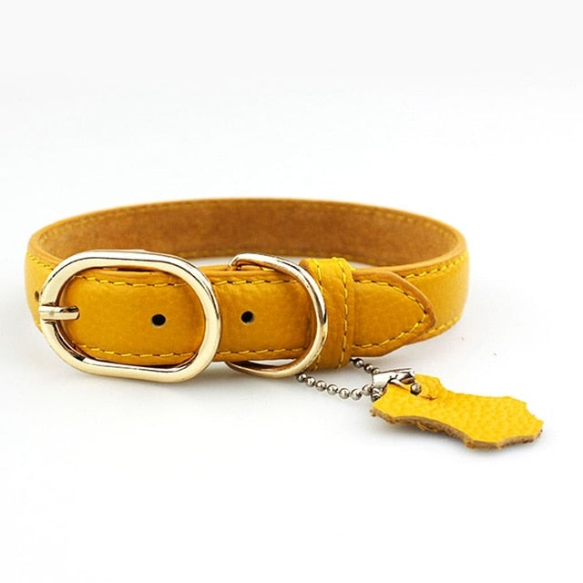 Dog Pet Collars - High Quality - Pure Leather Collar
