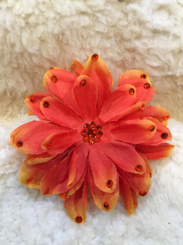 Orange Delight Hair Clip