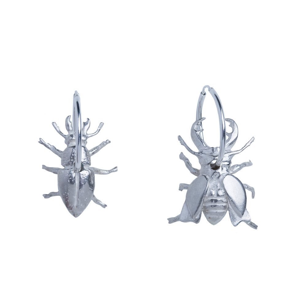 Recyled Gold Silver or Rose Gold Stag Beetle Earrings by Gung Ho and Chalke London