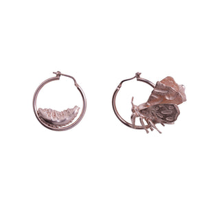 Tiger Moth Earrings Recylced Gold, Silver, Rose Gold, by Gung Ho Designs avalible at Natural x Lab