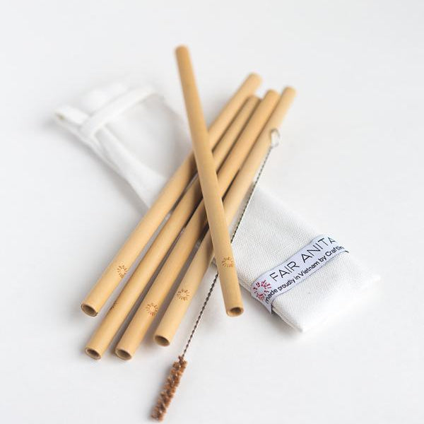 bamboo straw set of five with straw cleaner