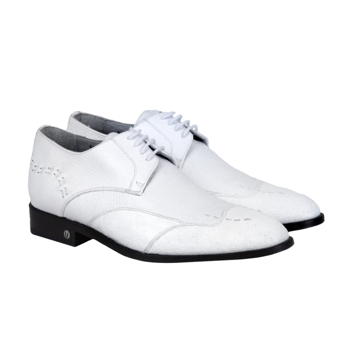Vestigium Cat Shark Oxford Shoes