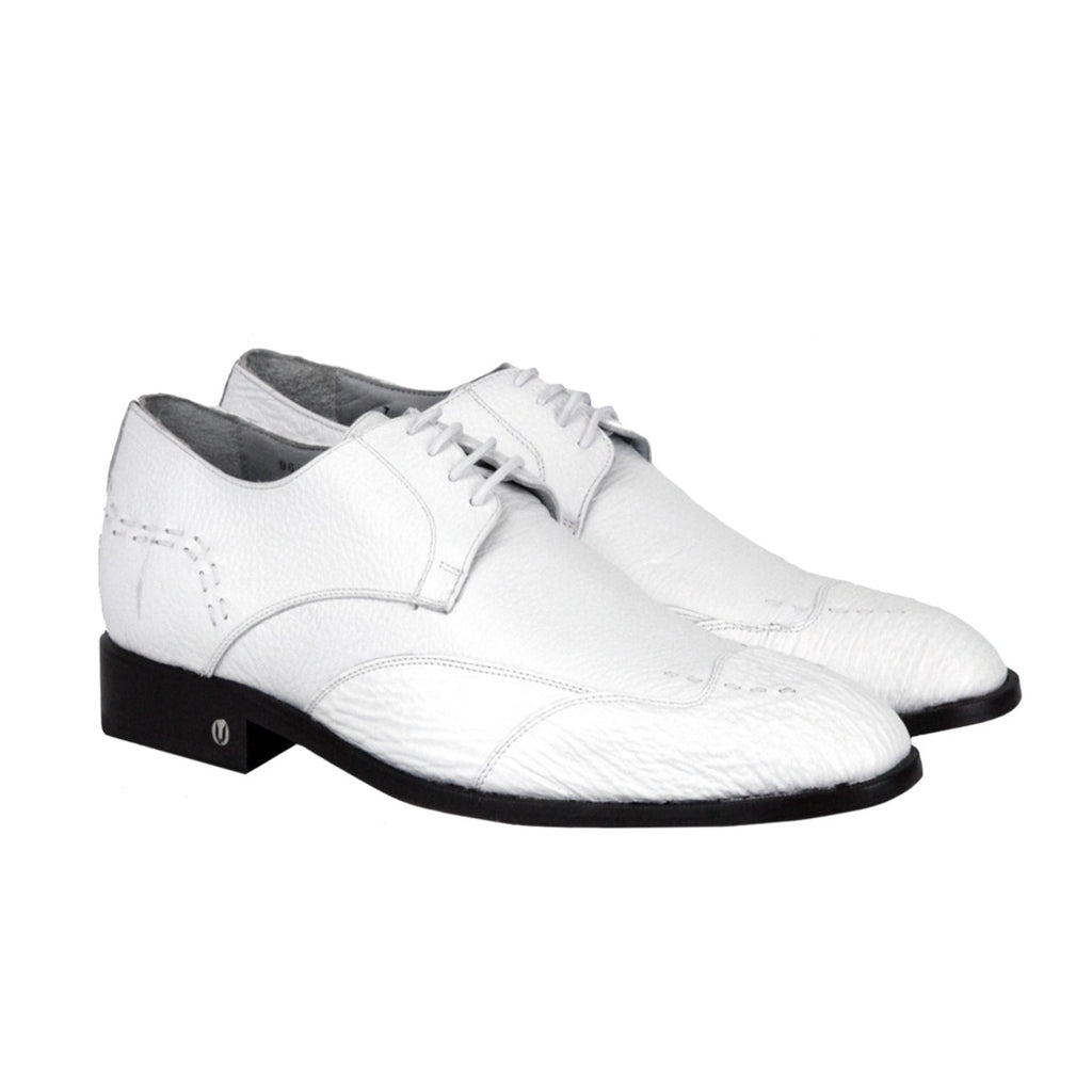 Vestigium Shark Oxford Shoes