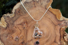 Load image into Gallery viewer, 2nd anniversary necklace - cotton seeds in bottle