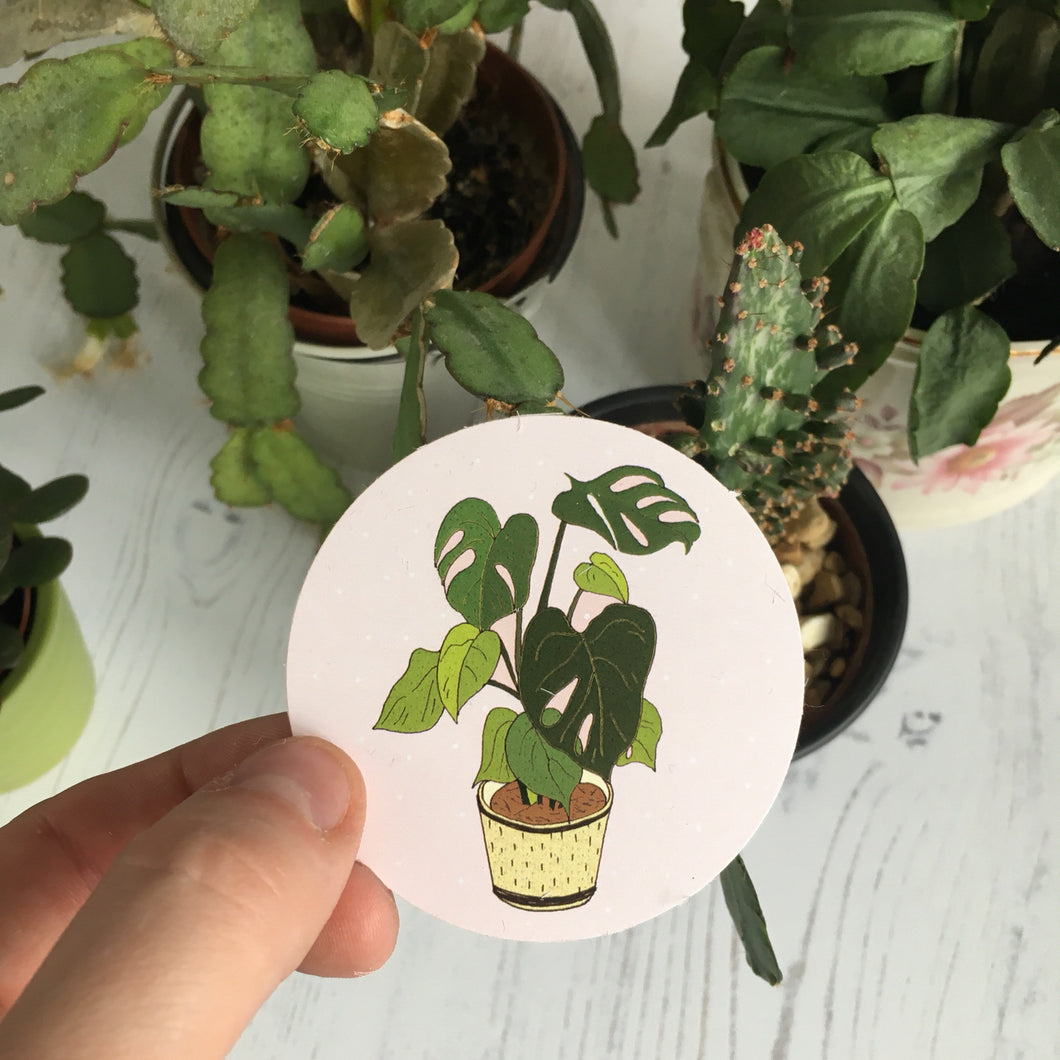 Monstera Plant Paper Sticker
