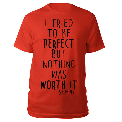 I tried to be Perfect Tee-Sum 41