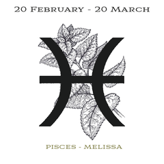 Insert cards for Illumine Pisces Melissa Candle