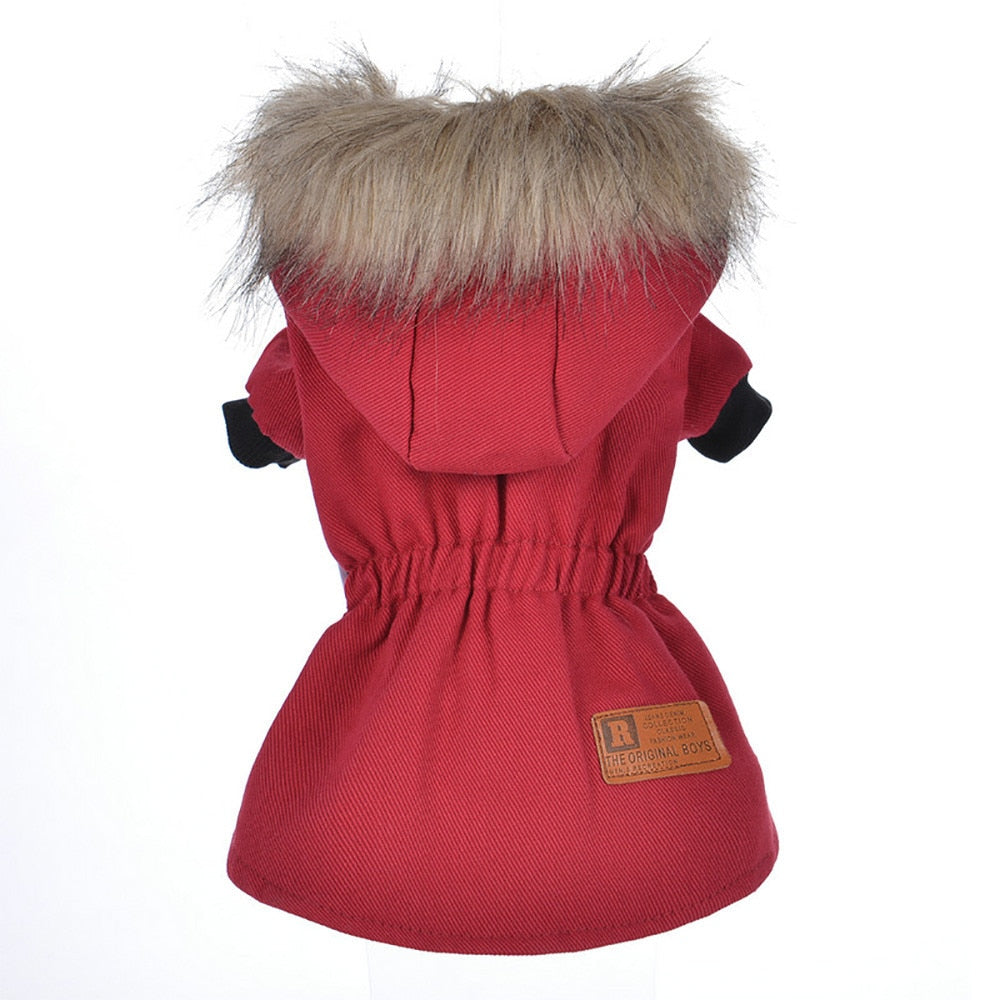 115f091b065 Winter Jacket For Small Dogs