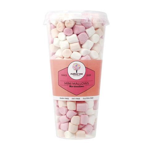 Forest Berries Flavoured Marshmallow Balls in a Gift Jar 600 g
