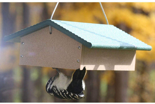 BC Double upside down suet