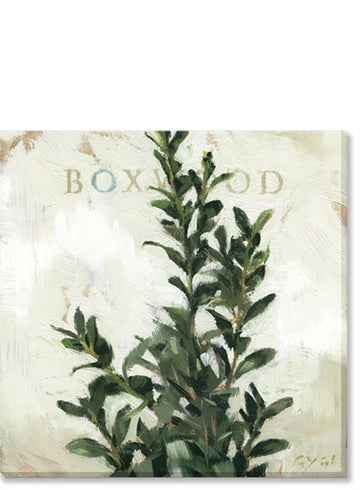 Boxwood Giclee Wall Art