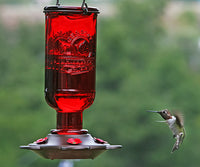Elixir Hummingbird Feeder 13 oz