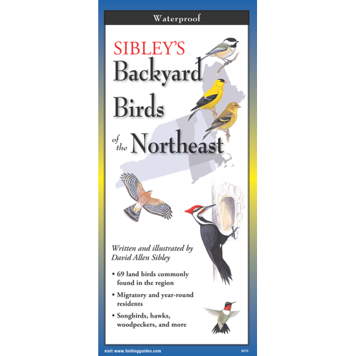 Sibley's Backyard Birds of North East Folding Guide