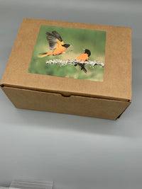 Oriole Gift Box Jelly