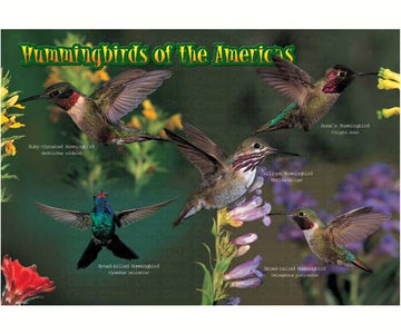 40 Piece Hummingbird Kids Puzzle