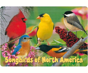 40 Piece Kids Songbird Puzzle