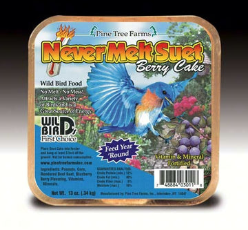 Never Melt Berry Suet
