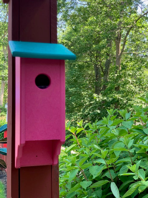 Poly Bluebird Bird House