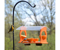 Oriole Double Feeder