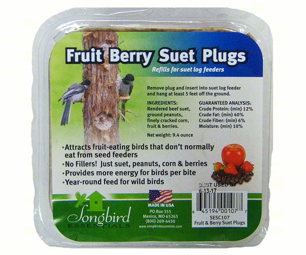 Fruit Berry Nut Suet