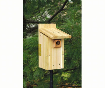 SE Ultimate Bluebird House