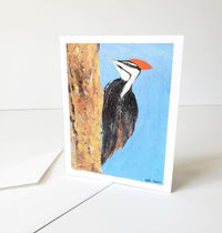 Pileated Woodpecker Card