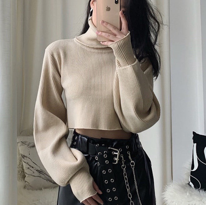 Chunky Knit Cropped Sweater - Pellucid