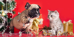 Dog And Cat Christmas Diamond Painting Kit - DIY
