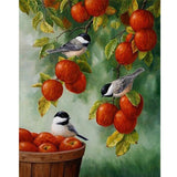 Apple Birds Diamond Painting Kit - DIY