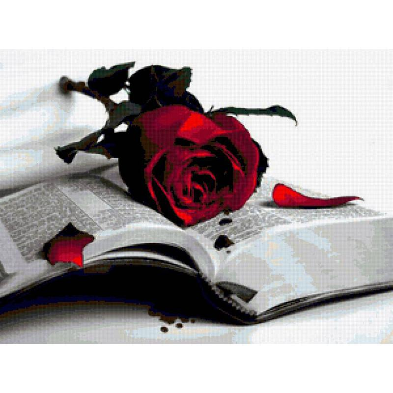 Roses And Books Diamond Painting Kit - DIY