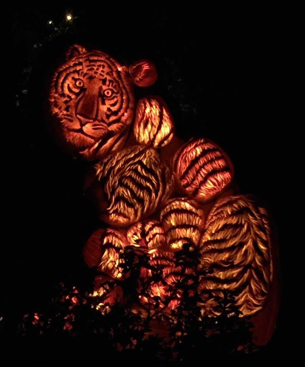 Tiger Lights Diamond Painting Kit - DIY