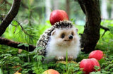 Cute Hedgehog Forest Apple Tree Diamond Painting Kit - DIY